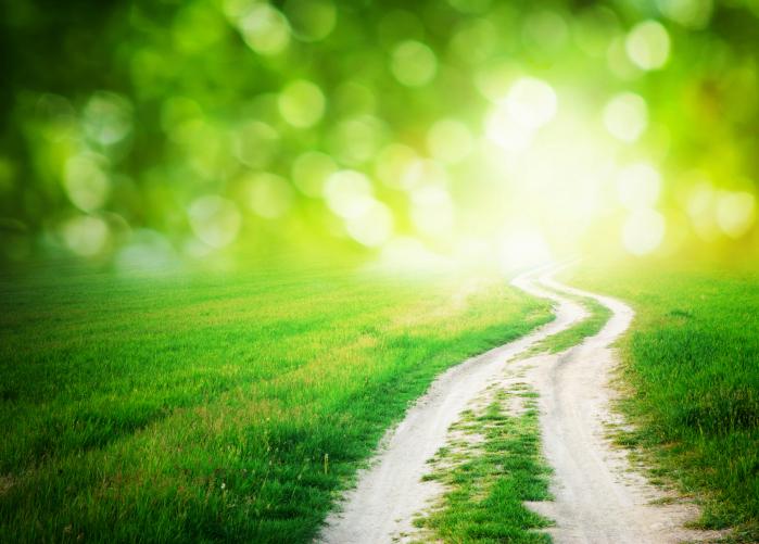 Spotlight: Eversource Energy