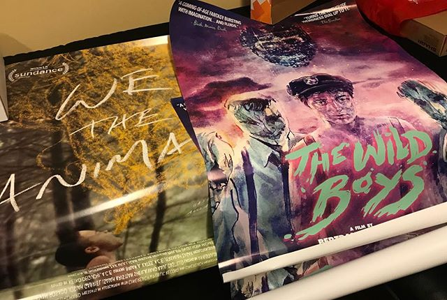 I love opening packages at at this time of the year! @wetheanimalsfilm @orchfilms #TheWildBoys @alteredinnocence  #kal2018 #kaleidoscope #lgbtq #filmfestival #posterart #movieposter #movieposterart #queer #loveit
