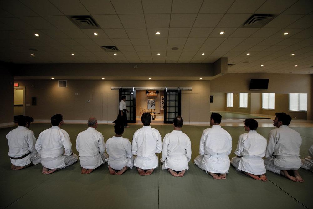 Budo Brothers Martial Arts Digital Seminars