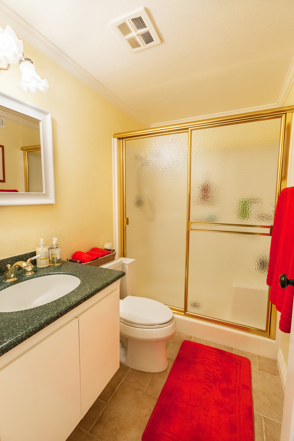 16616_Greenbrook_Cir-GuestBath_02.jpg