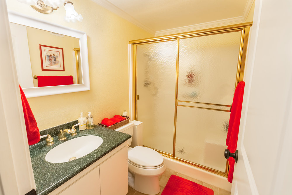 16616_Greenbrook_Cir-GuestBath_01.jpg