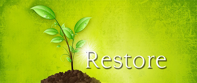 Lord-of-Restoration-Blog-Banner.png