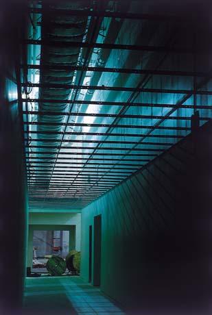 Ceiling Grid.jpg
