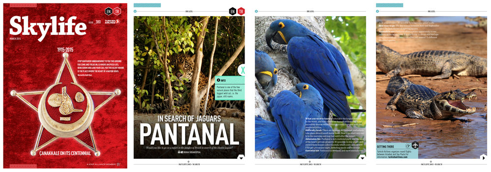 "Skylife Magazine Issue #380  [Turkish Airlines Inflight Magazine]  March 2015   ""In Search of Jaguars: Pantanal"" Words & Photo by Burak Dogansoysal"