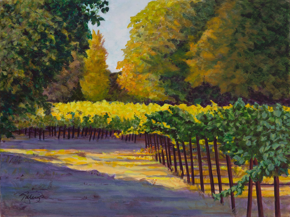 Napa-Valley-Vineyard-I.jpg