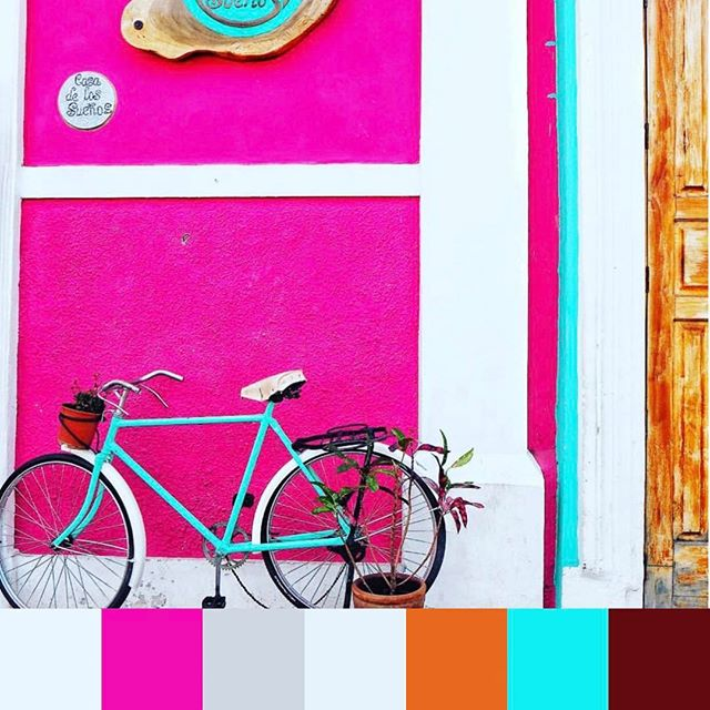 Beautiful pops of #pink in #nicaragua. 📷 @taylor_fuller | #foundpalettes