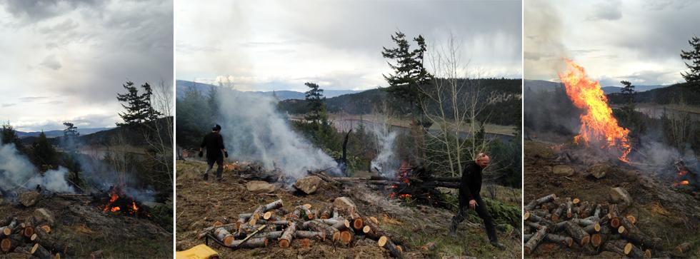 spring_fires.jpg