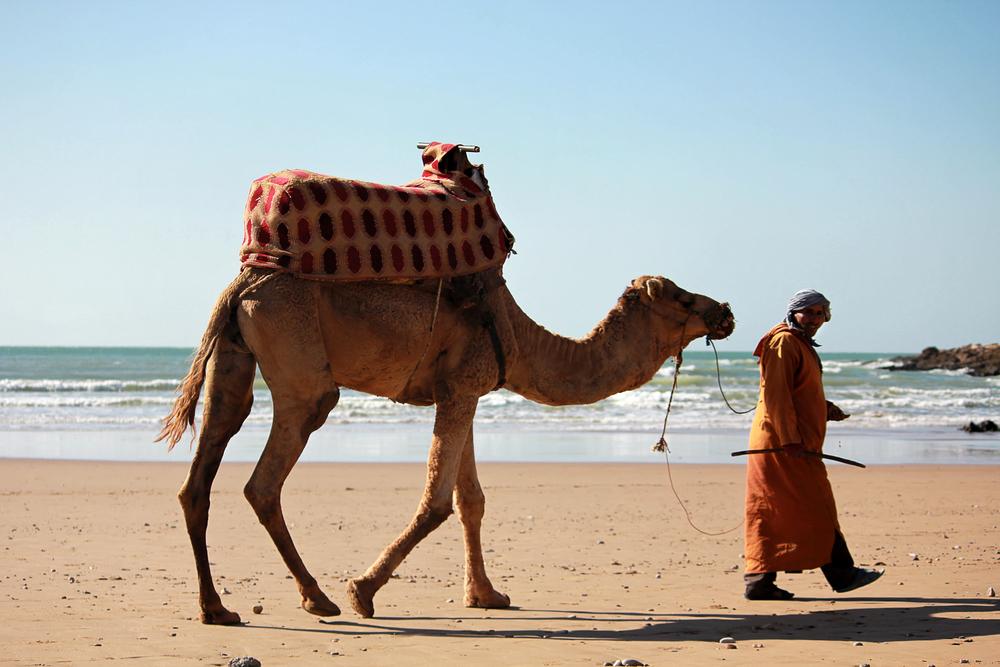 marokko1.jpg