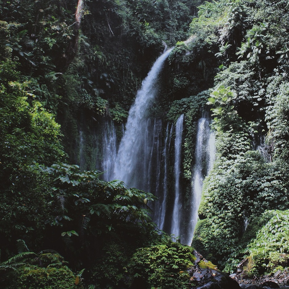 Tiu Kelep Waterfall, Lombok, West Lesser Sunda Islands       Photo: Kamazka Btara