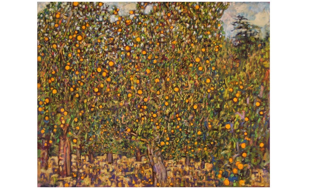Orange grove at Krishnamurti foundation, Ojai California
