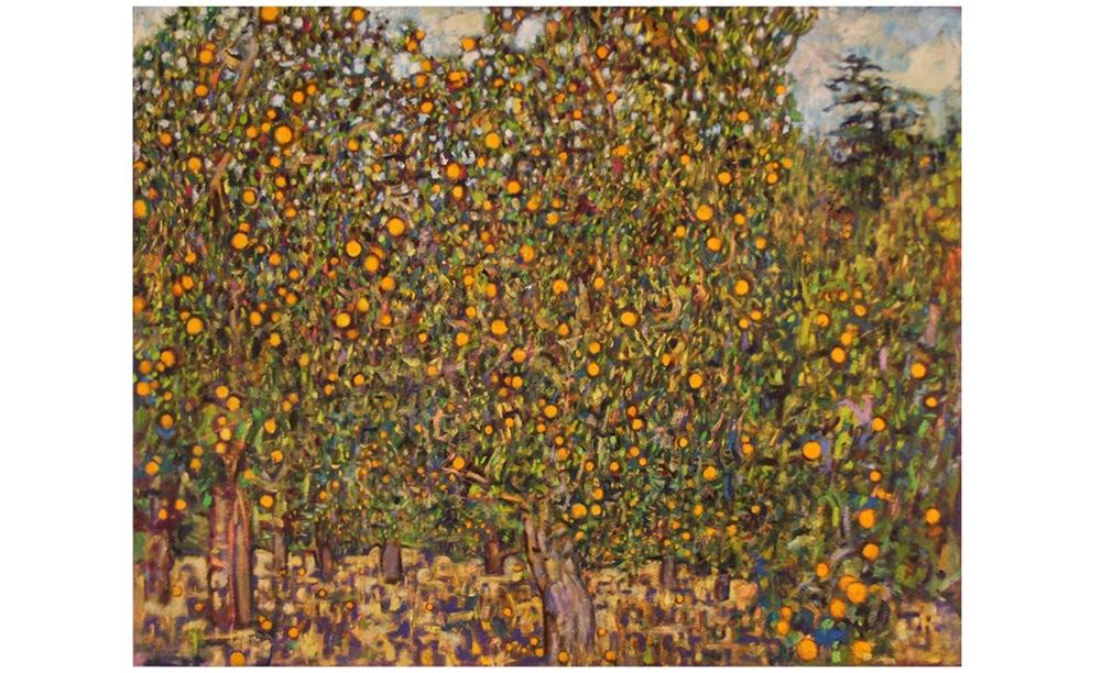 Orange grove at Krishnamurti foundation, Ojai California