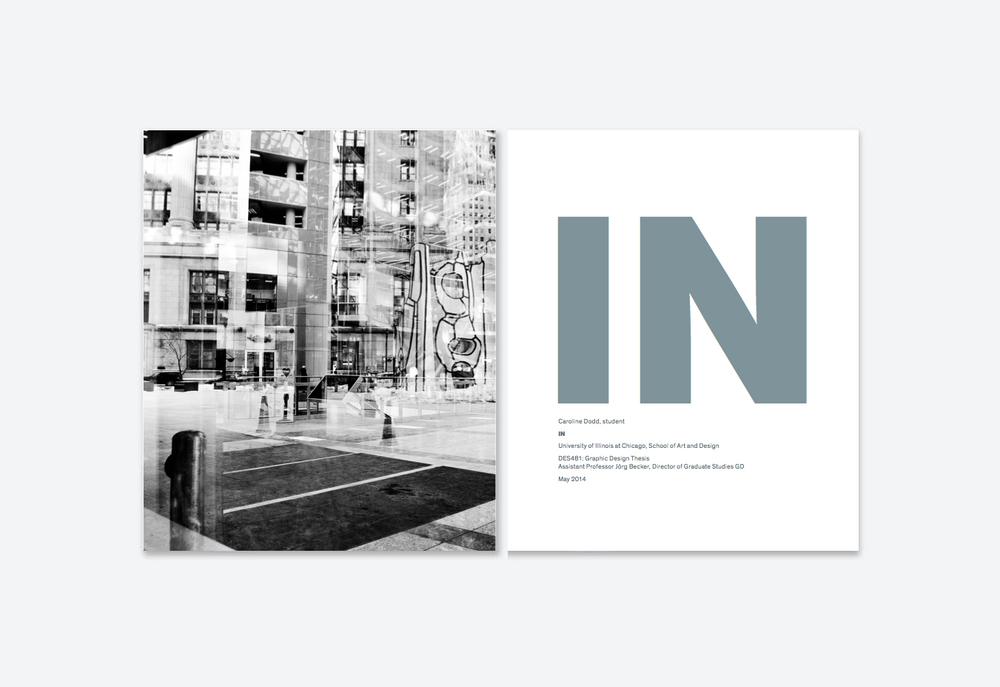 IN_1.jpg