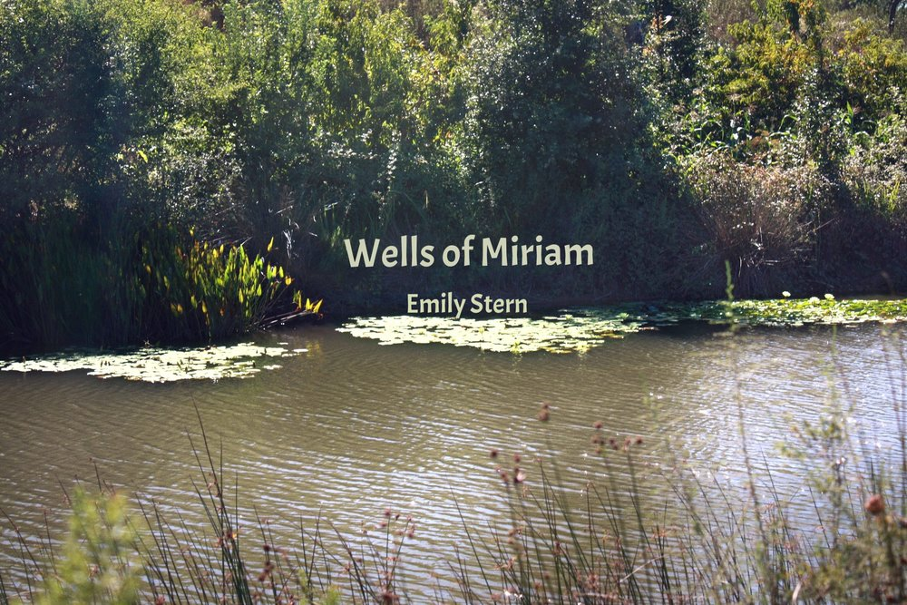 WELLS OF MIRIAM