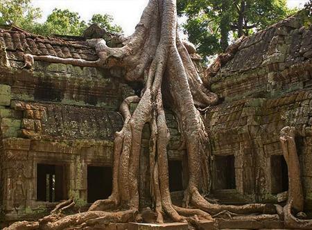Ancor Watt, Cambodia
