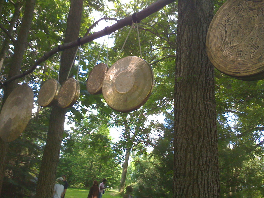 Gong trees (III) for Grain of Sand film shoot, Ravenna, OH