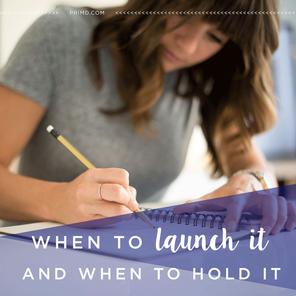 Primd Marketing - When to Launch it and When to Hold It