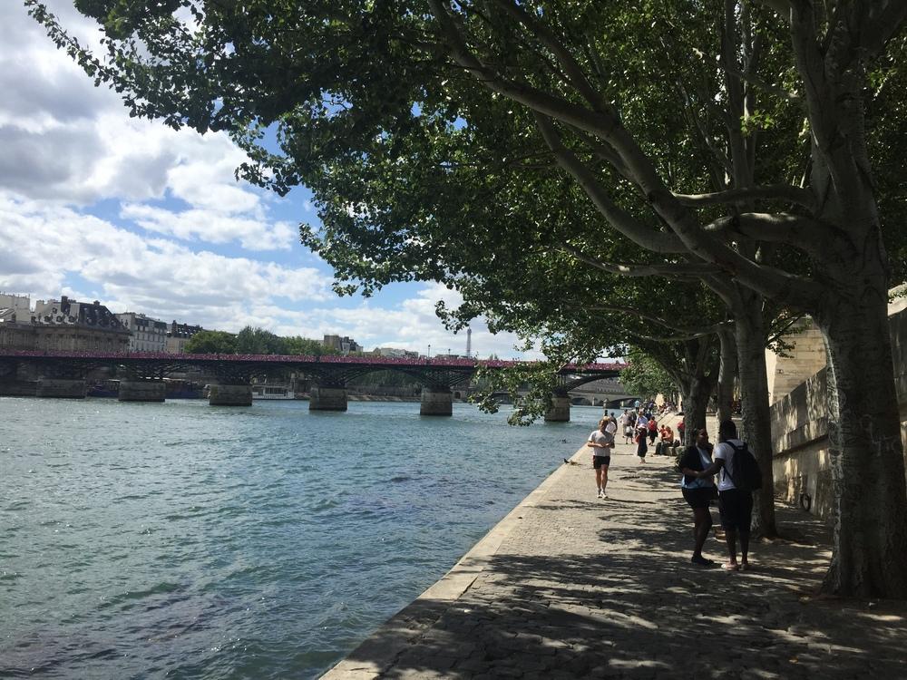 Seine / 5 August 2015
