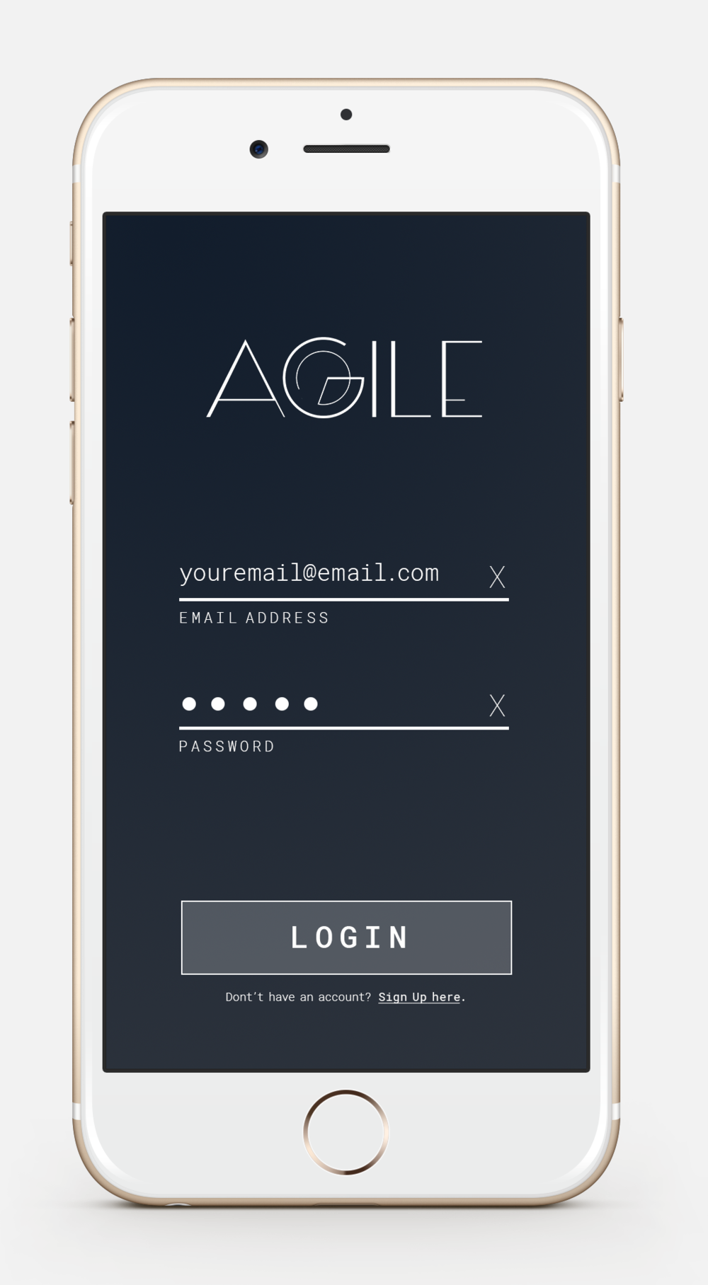 agile-intro-login-filled-in.png
