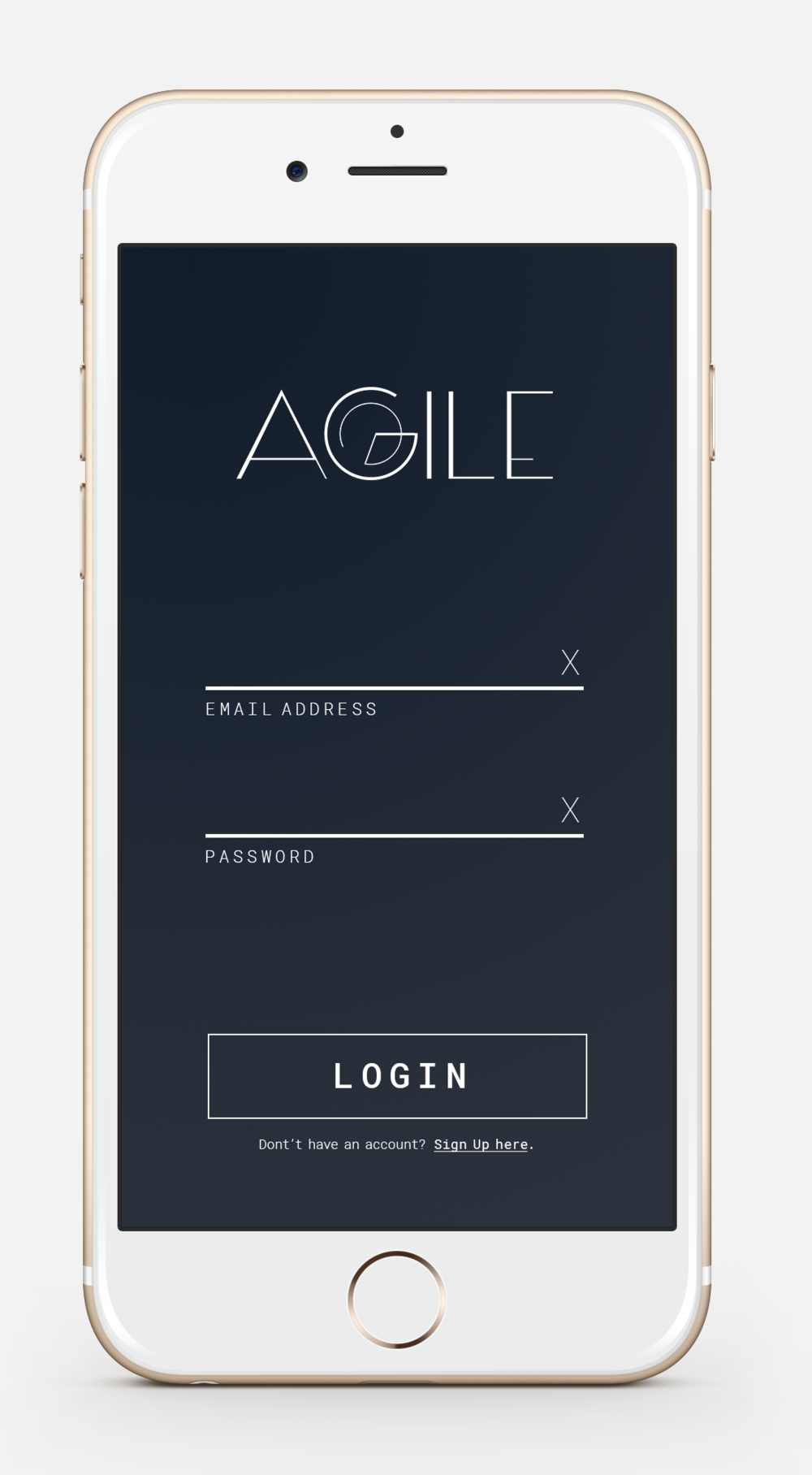 agile-intro-login.png