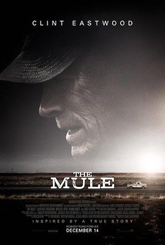 Mule.jpg