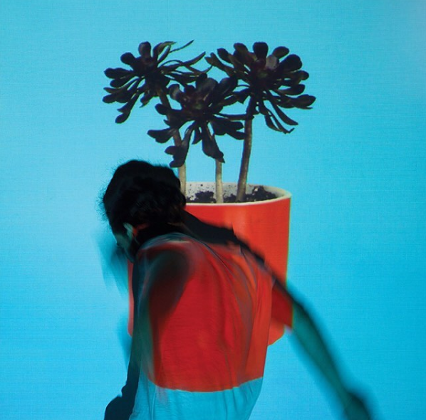 We're so excited about Local Natives new album SUNLIT YOUTH out September 9