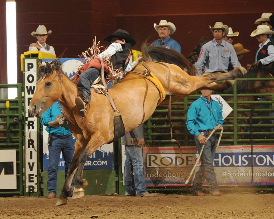 Tim O'Connell  (Photo Courtesy CNFR & Hubbell Rodeo Photos)