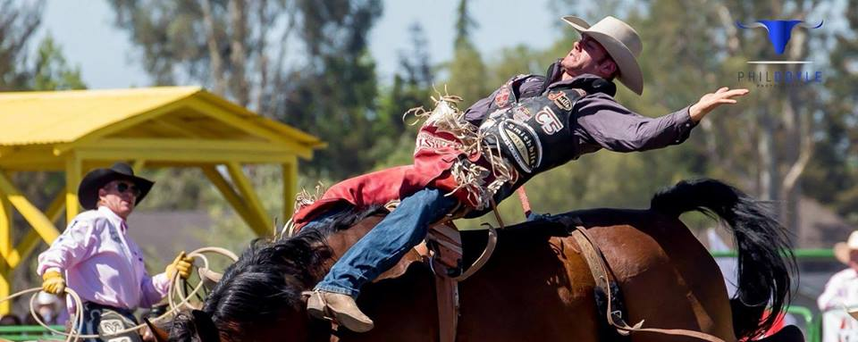 Long week on the road but a memorable one. Was 90 for the first time to split 1st in Weatherford, Texasplaced in the Gladewater Round Up Rodeo, Livermore Rodeo and Innisfail Pro Rodeo at the Daines Ranchand got through a pretty scary wreck without a mark. Now I'm on my way to New Mexico to pick up my son for a week at the family ranch in Brownfield, Alberta. (Picture from Livermore ride). Justin Boots C5 RodeoSmithbilt Hats Inc. Barstow Pro Rodeo