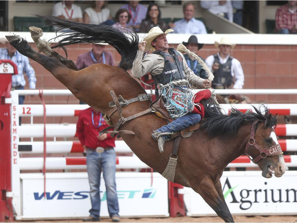 Cody Wright is tossed about during the saddle bronc event at the Calgary Stampede Rodeo at the Stampede Grandstand in Calgary on Saturday, July 4, 2015. ARYN TOOMBS /  CALGARY HERALD