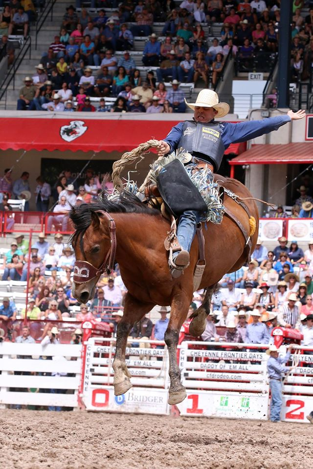 "Jesse Wright took the lead in the saddle bronc riding in the first go-round of the Cheyenne Frontier Days™ Rodeo. Jesse rode ""Spider"" of David Bailey Ranch Rodeo & Livestock for 87 points. Photo credit: Molly Morrow PRCA Rodeo Photographer."