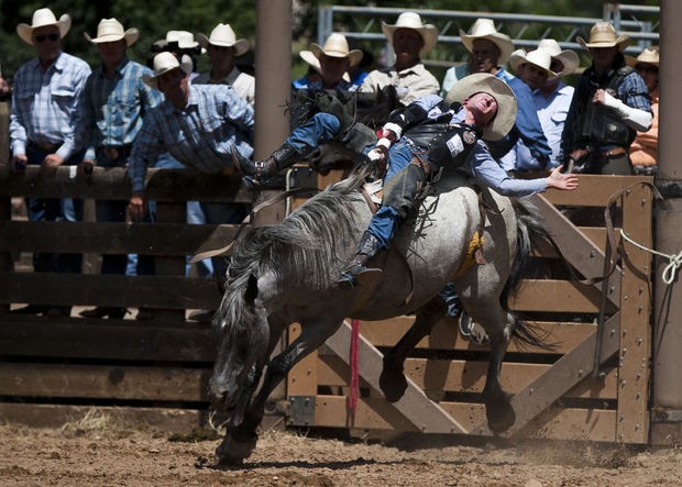 Bill Tutor, of Hunstville, Texas, holds to the horse Blue Sugar during bareback riding competition Saturday afternoon during the PRCA Rodeo at the Days of '76 celebration in Deadwood. Bill Tutor, Hunstville, Texas,