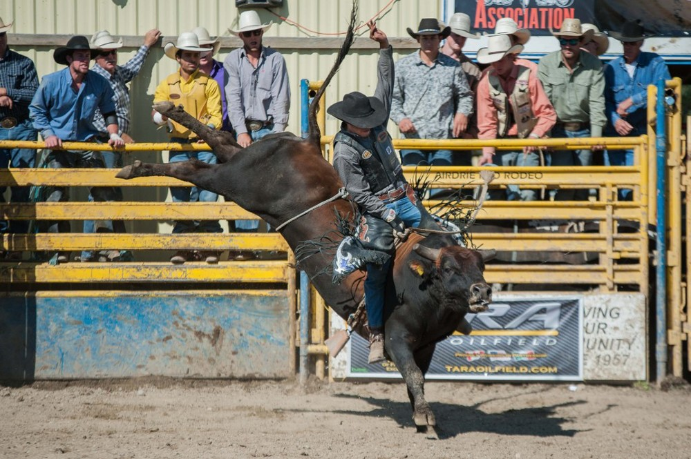 Laurie Hawea rides Vold Rodeo's Gerry Reil to win day two of the AOA Bikes & Bulls on August 23rd, 2015. Photo by Jack Vanstone/Legendary Photoworks