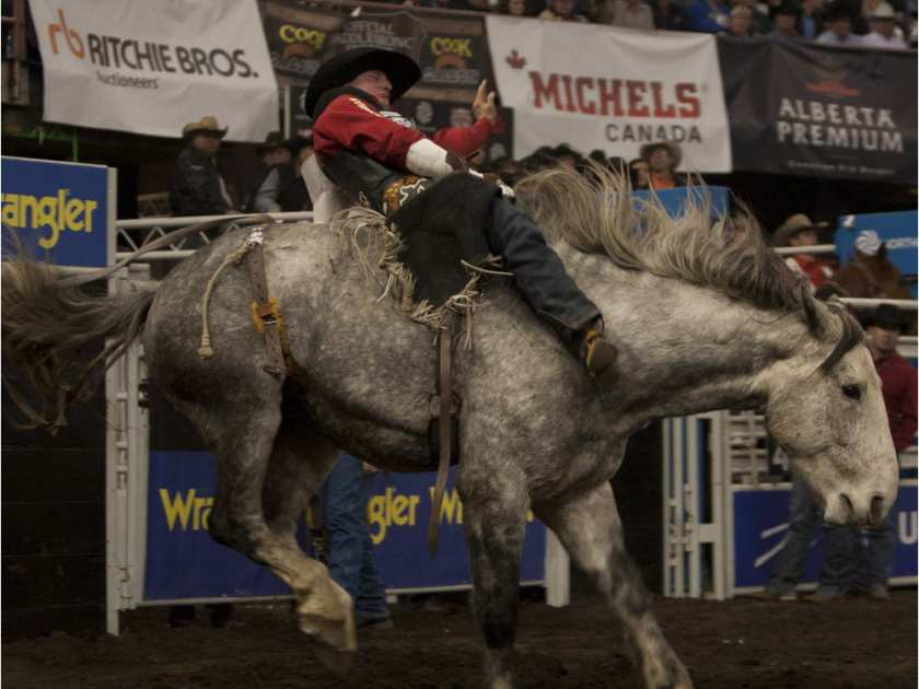 Jake Vold, pictured on a winning ride on Day 3 of the 2014 CFR bareback riding competition, goes into the 2015 edition of the rodeo the season leader. BRUCE EDWARDS / EDMONTON JOURNAL