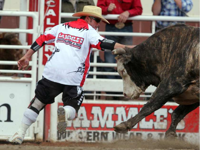 Scott Byrne distracts a bull during Calgary Stampede competition in July 2011. After two decades of staring down slobbering bulls, Byrne is set to retire at the conclusion of this week's Canadian Finals Rodeo in Edmonton. COLLEEN DE NEVE / CALGARY HERALD /