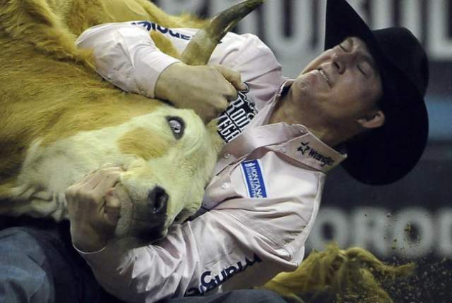Team roper Junior Nogueira from Scottsdale, Ariz., pulls a rope tight on a calf a calf during the first go-round of the 2015 Wrangler National Finals Rodeo at the Thomas & Mack Center in Las Vegas Thursday, Dec. 03, 2015. Josh Holmberg/Las Vegas Review-Journal