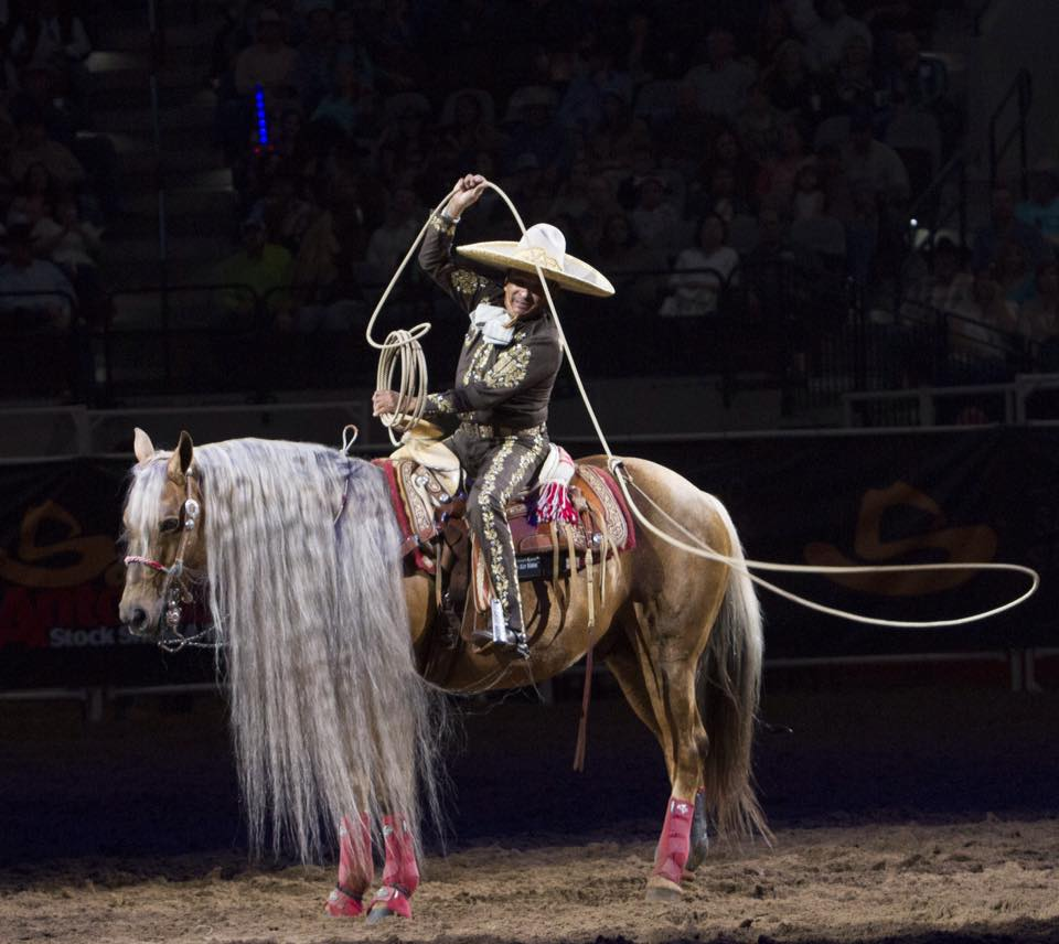 Have you seen our specialty act during the Rodeo this year? Tomas Garcilazo is such a treat to watch every night! #SARodeo