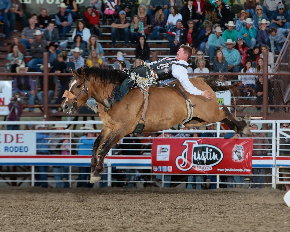 Jake Vold....Cody Stampede photo by Andy Watson/prcaphotos.com