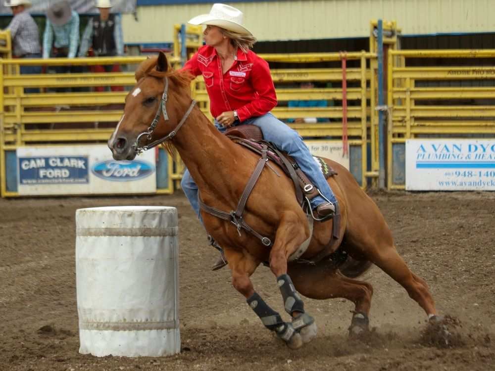 Barrel racer Nancy Csabay and Wicked at the Airdrie Pro Rodeo on July 1, 2016. (Mike Drew/Postmedia)