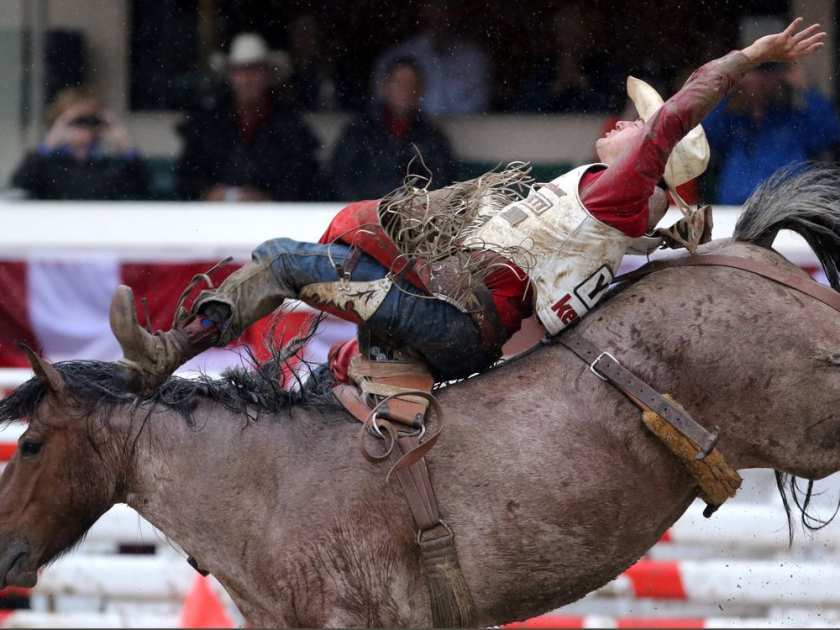 Steven Peebles winning ride during bareback championship at the Calgary Stampede in Calgary, Alta., on Sunday July 17, 2016. Leah Hennel/Postmedia LEAH HENNEL / LEAH HENNEL/POSTMEDIA