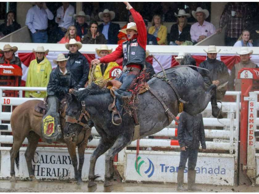 Zeke Thurston from Big Valley, Ab., won saddle bronc on Spring Planting at the Calgary Stampede rodeo Sunday July 17, 2016. Mike Drew/Postmedia MIKE DREW / CALGARY HERALD