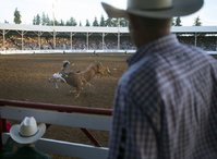 Tim Bridwell moves horses in the staging area at the St. Paul Rodeo. (COURTESY PHOTO)
