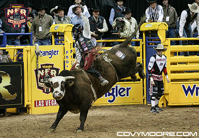Brennon Eldred 86.5 on Calgary Stampede's Wranglers Extreme. Covy Moore Photo
