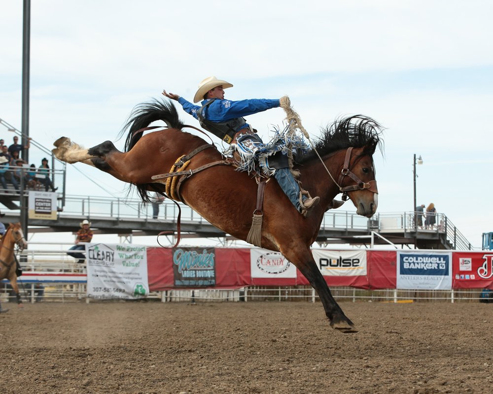Jesse Wright from Milford, Utah rode Frontier Rodeo's Delta Force for 85.5 points and the 98th annual Cody Stampede saddle bronc riding championship.  PRCA photo by Andy Watson