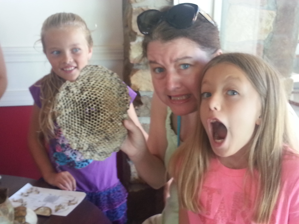 A wasp's nest! Ewwwww! Best part?  The sweet girl's face in the back!