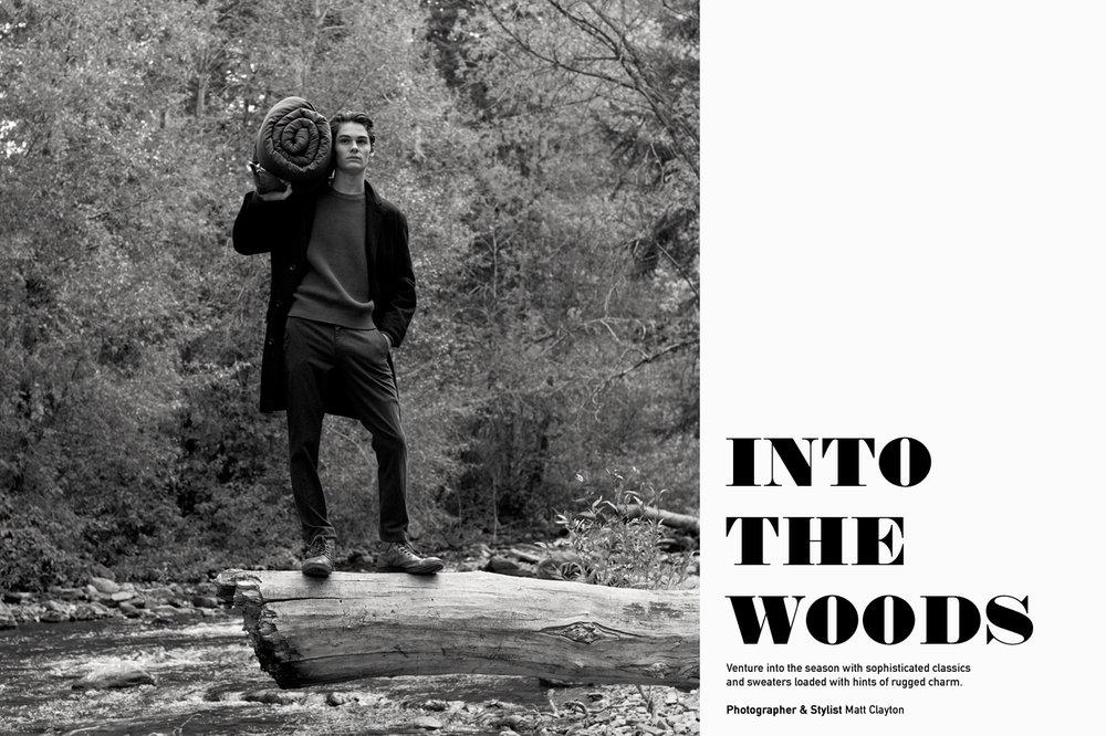 WoodsStock1.jpg