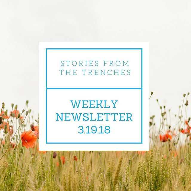 We need one more story for our current series - Blended Tales. Click on our bio to where to submit your story. #stories #storiestrenches #monday #newsletter
