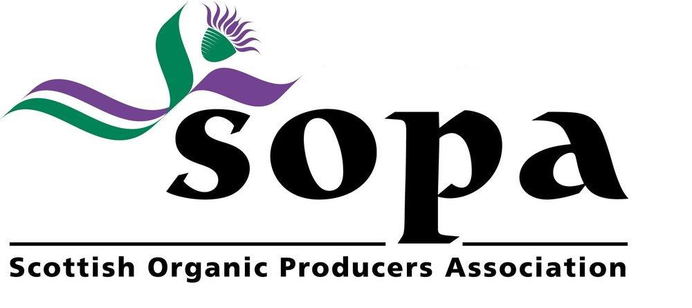 SOPA title.jpg