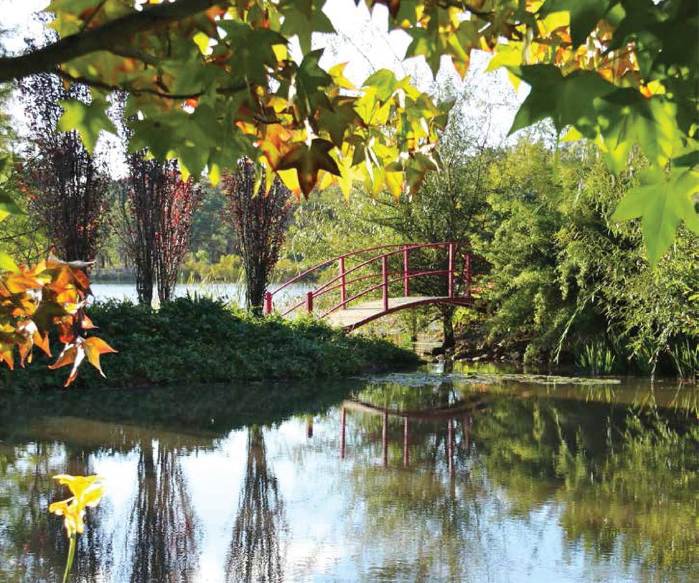 Bramble Patch private garden - 381 Townsend Road, Glen Aplin