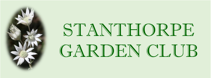 stanthorpe garden club.png