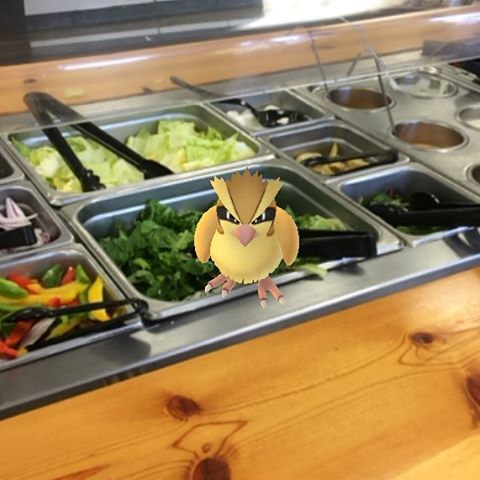 Well, that can't be sanitary ... #PokemonGo