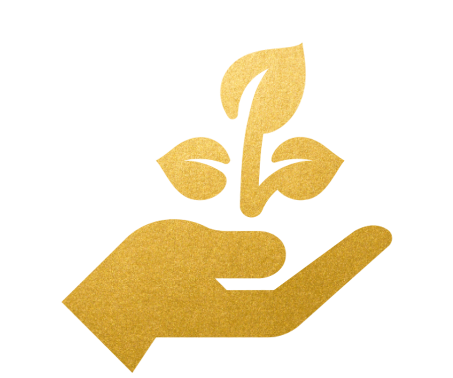 EXPANSION - The Soulebration experience is designed to bring spiritual development that will expand your personal and business growth.